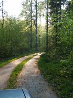 Jalan menuju kediaman Jorn Utzon