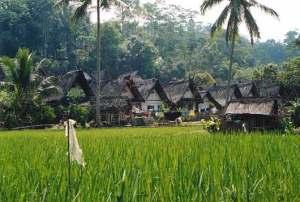 Kampung Naga. Salah satu kawasan cagar budaya yang menuntut perhatian pemerintah, sejak diluncurkan program konversi minyak tanah ke elpiji.