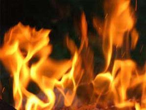 api melalap bayi2 di penitipan