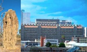 konsep rumah rayap pada Eastgate Center, Zimbabwe, yang berprinsip pendinginan pasif.
